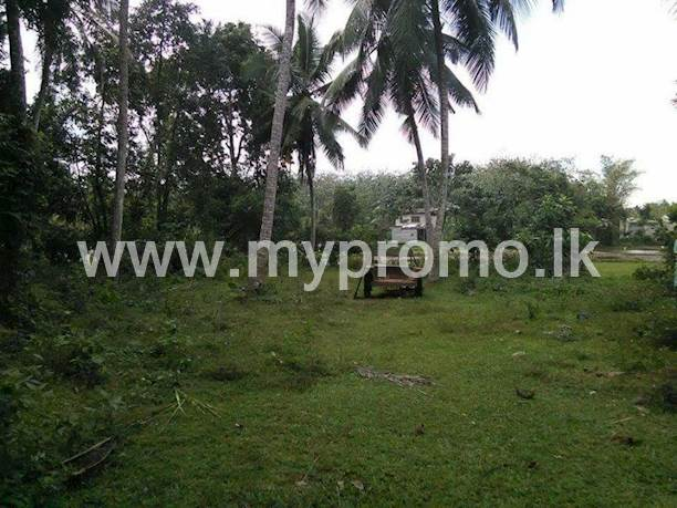 Land for sale in Raigama