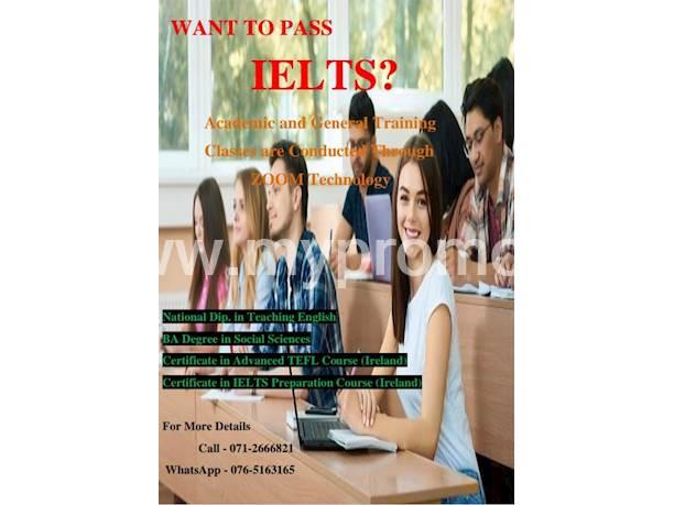 Online IELTS Instructor