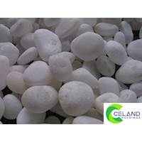White Pebbles For Landscaping