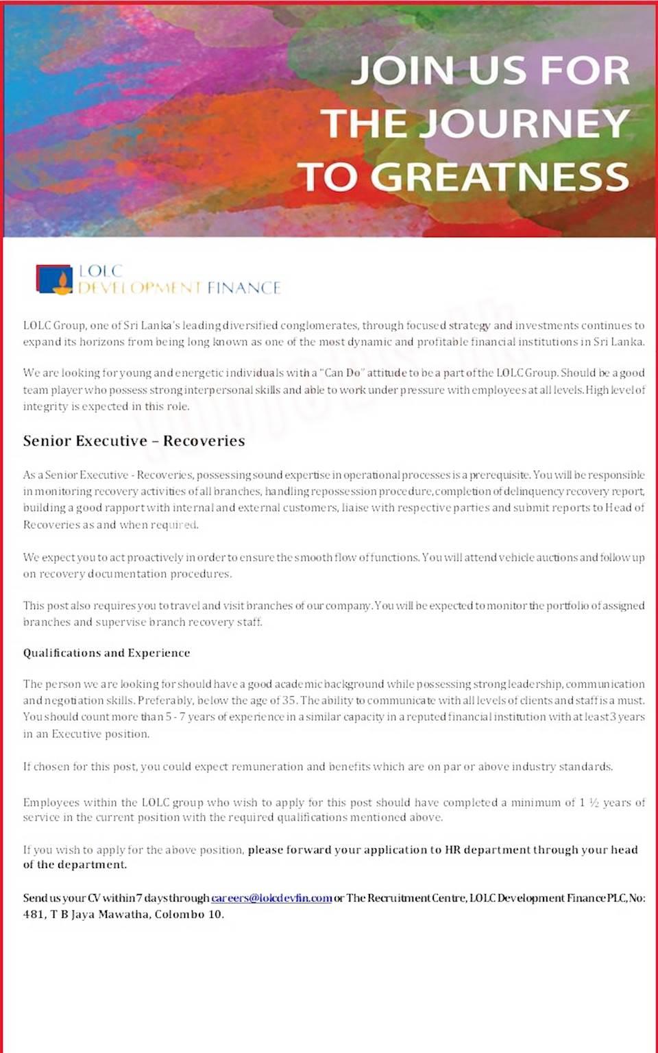 Senior Executive - Recoveries