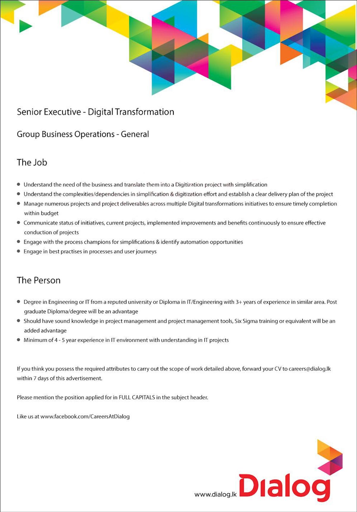 Senior Executive - Digital Transformation