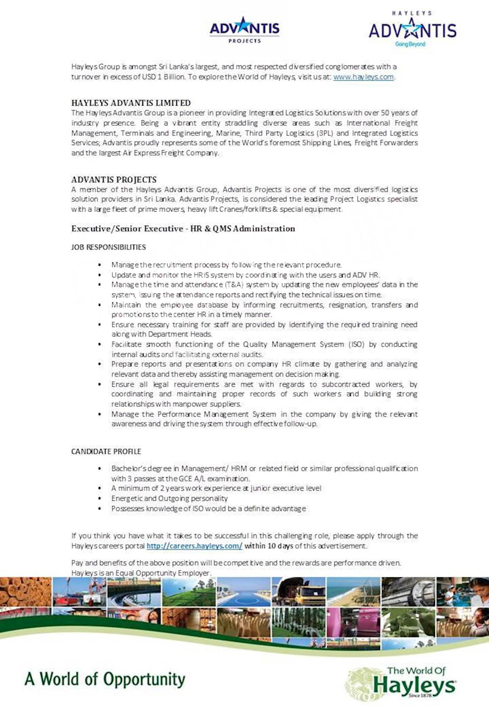 Executive / Senior Executive - HR and QMS Administration at