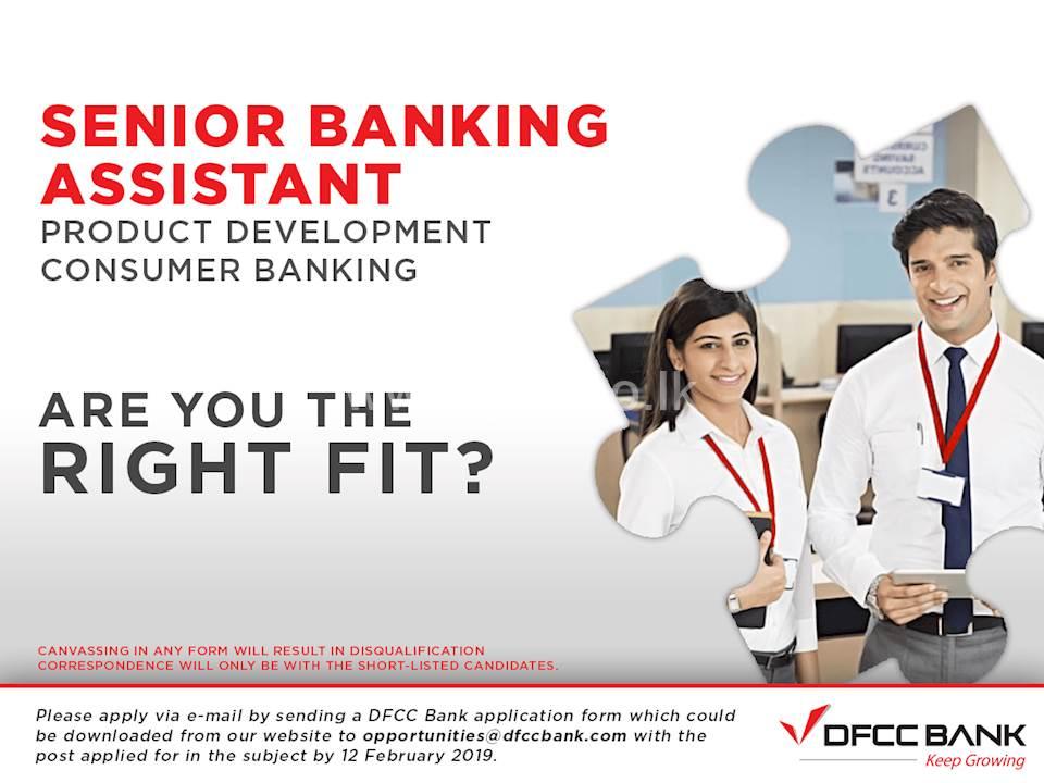 Senior Banking Assistant
