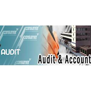 P.A. Accountants & Consultants