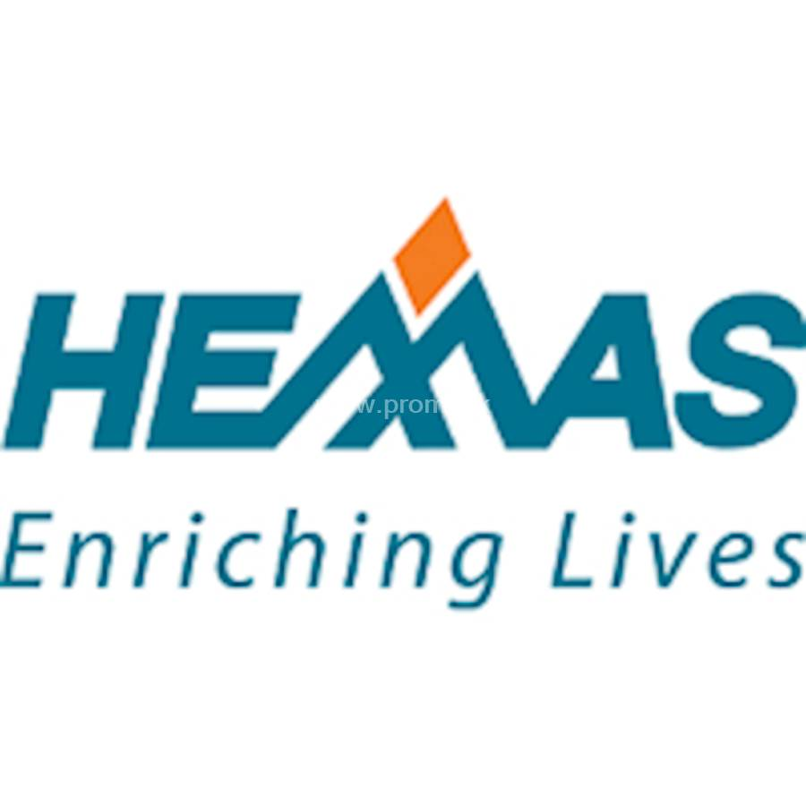 hemas holdings annual report 2017