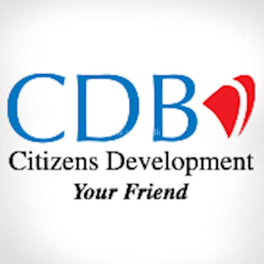 Citizens Development Business