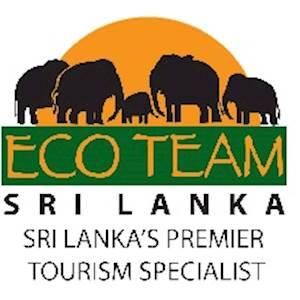Eco Team