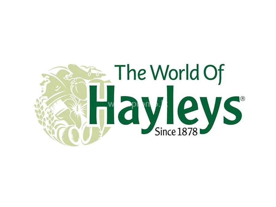 Hayleys Group