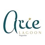 Arie Lagoon
