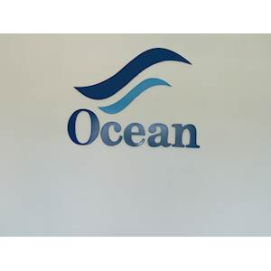 Ocean Cleaning Services