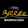 Breeze Barracuda