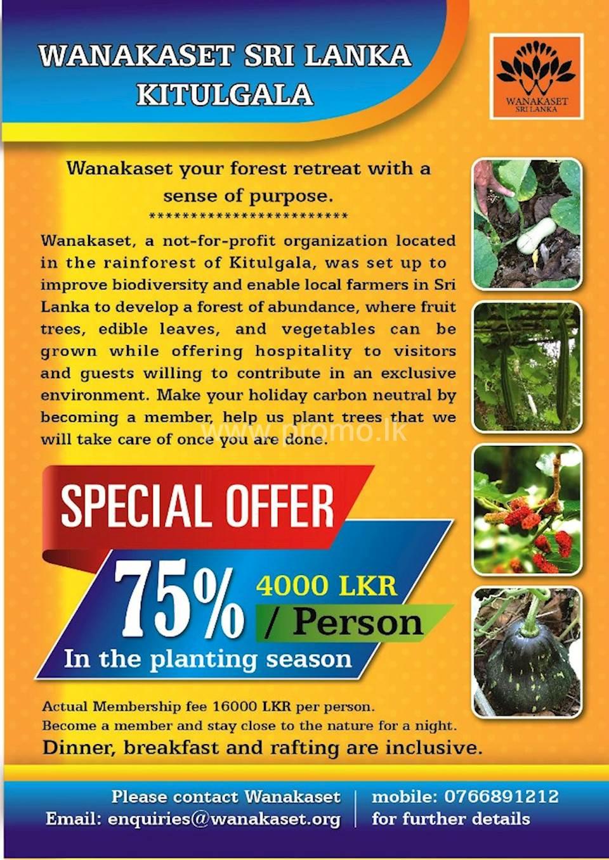 75% OFF ON TREE PLANTING SEASON