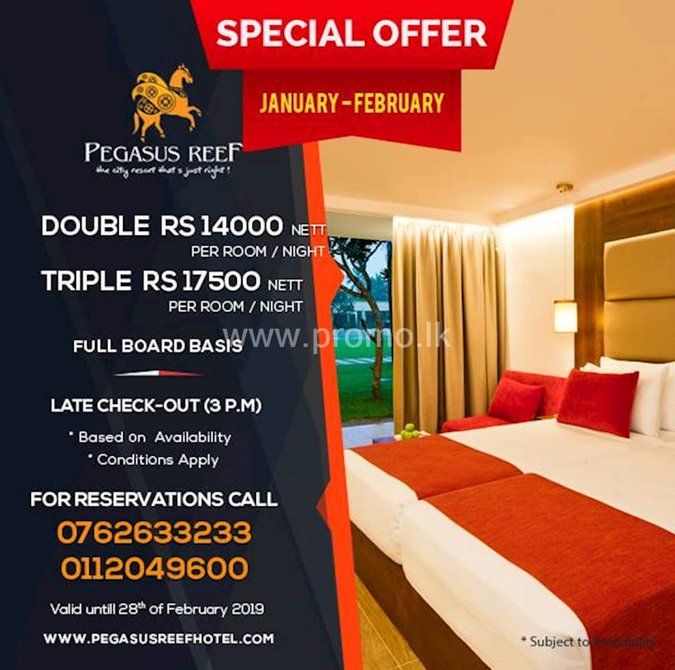 Special Offer at Pegasus Reef