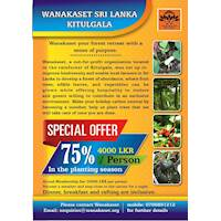 75% OFF ON TREE PLANTING SEASON