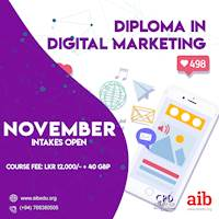 Diploma in Digital Marketing ONLINE