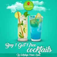 Buy 1 Get 1 Free Cocktails at The Lion Pub